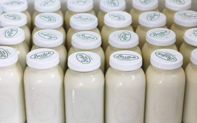 Raw Dairy Fact #3: Bio-diverse Enzymes