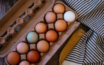 Caged Vs. Pastured Eggs: Is There Really A Difference?