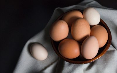 How To Choose The Best Eggs For Your Family